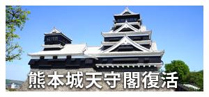 熊本城観覧案内